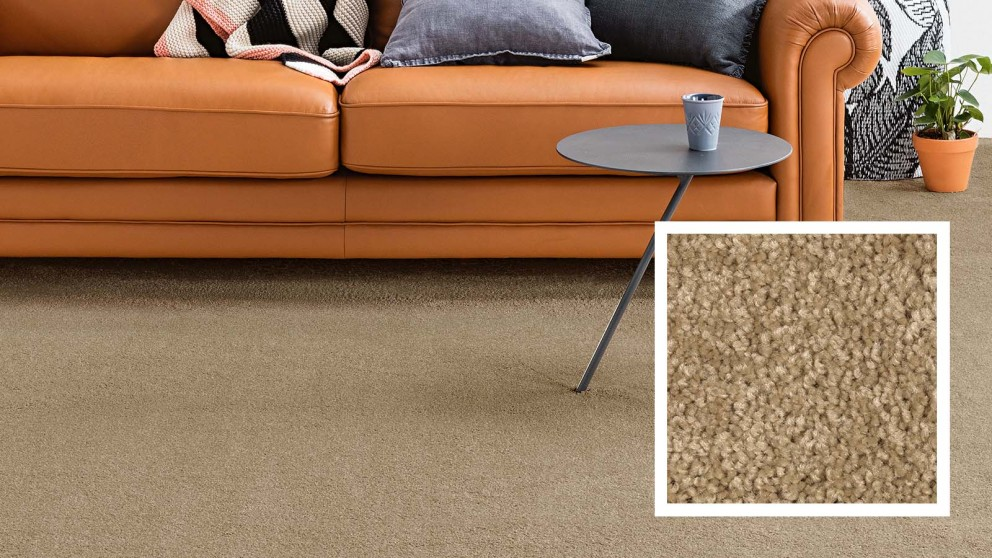 Dreamweaver New Horizon Carpet Flooring