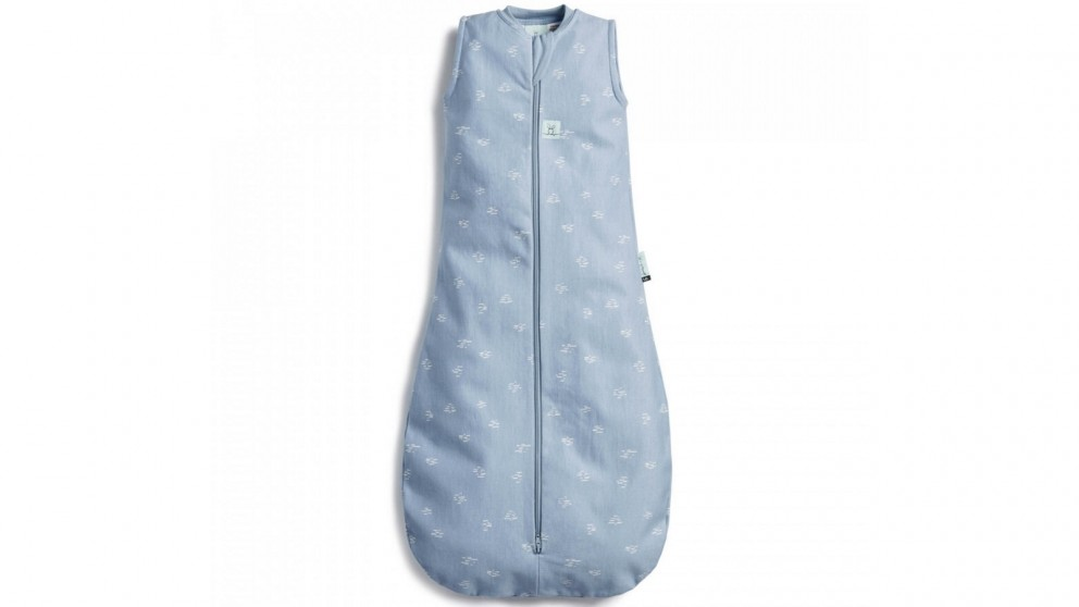 Ergo Pouch Tog 0.1 Jersey Bag for 3-12 Months Baby - Ripple