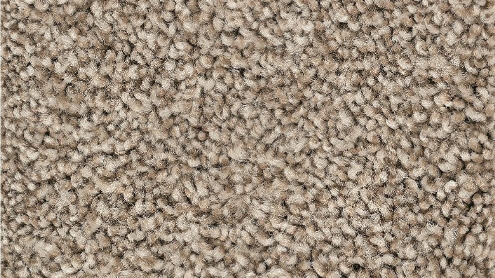 Smartstrand Forever Clean Chic Tonal Yorktown Carpet Flooring