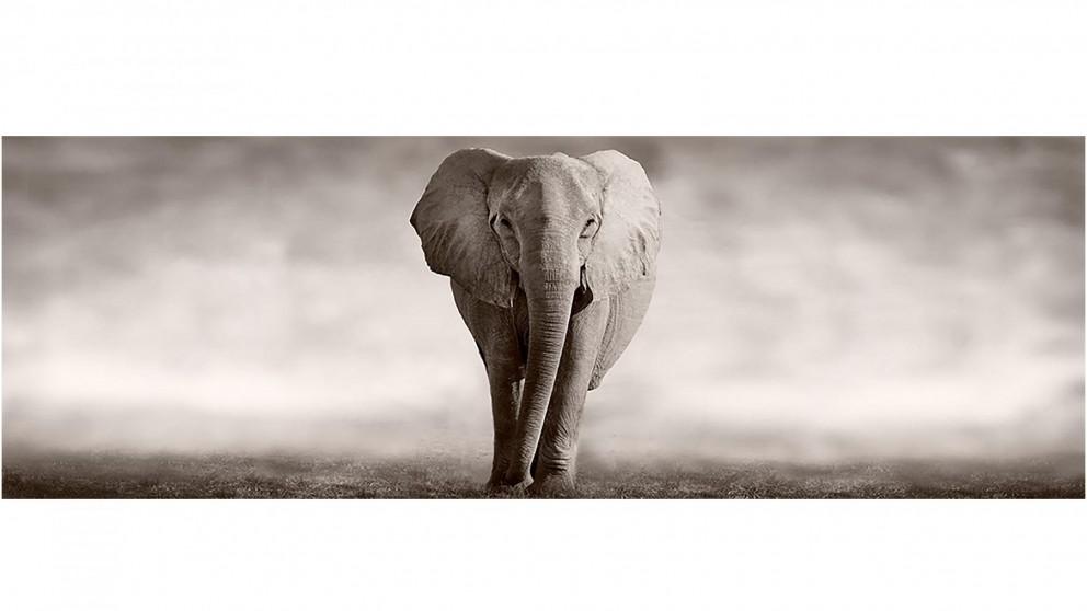 Artbox Elephant Determination