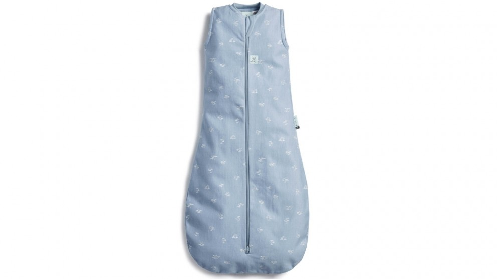 Ergo Pouch Tog 0.2 Jersey Bag for 8-24 Months Baby - Ripple