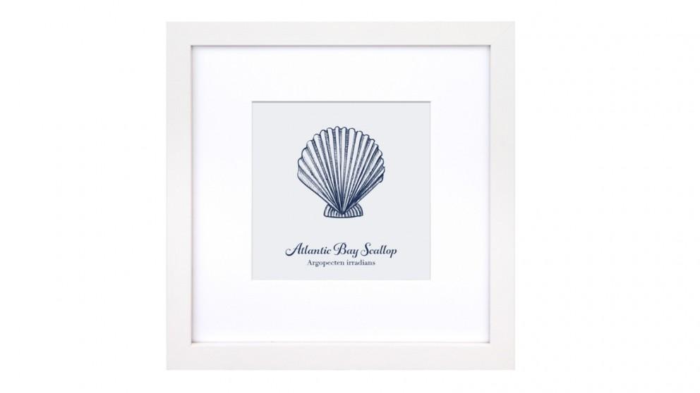 Profile Products Framed Art Marine Life Study 3 - 53 x 53cm