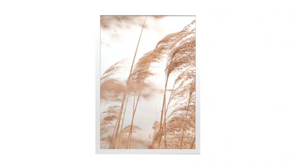 Profile Products Framed Art - Pampas Grass 1 - 75 x 100cm