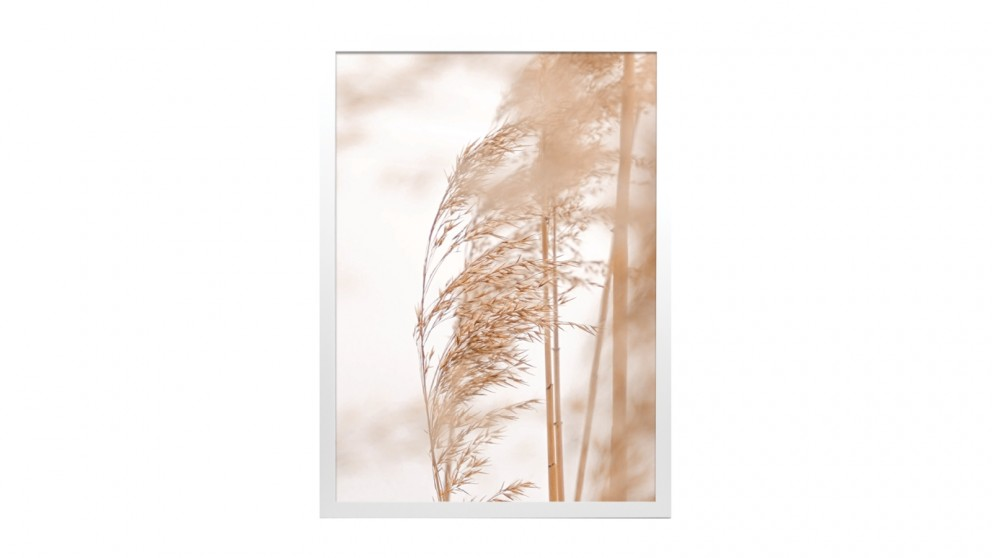 Profile Products Framed Art - Pampas Grass 3 - 50 x 70cm