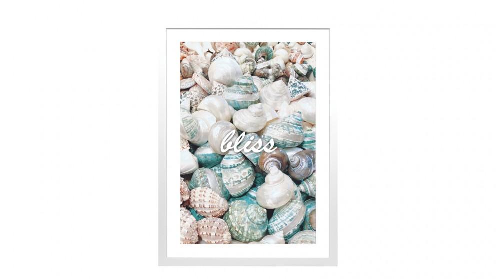 Profile Products Framed Art - Seashells 3 - 63 x 93cm