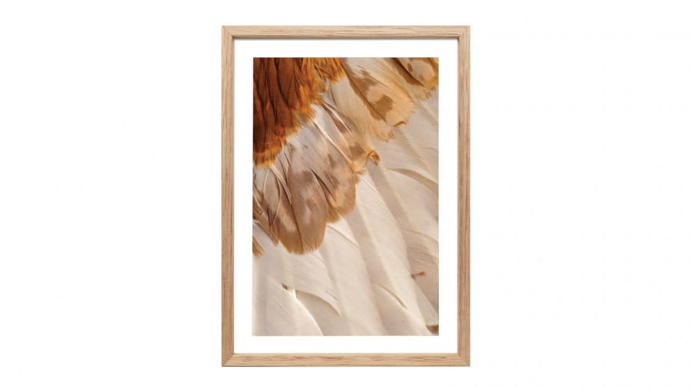 Profile Products Framed Art - Wild Feathered 3 - 78 x 103cm