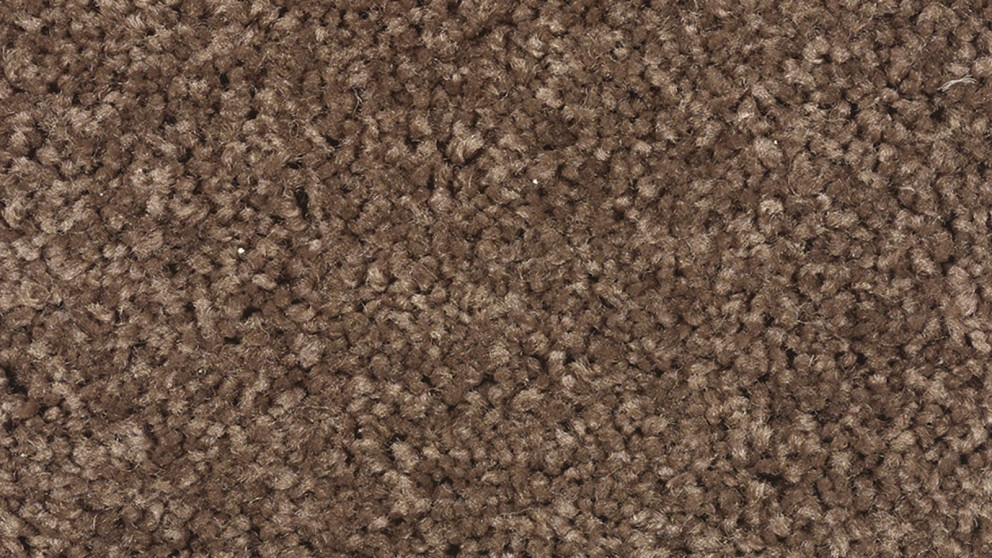 SmartStrand Forever Clean Chic - Thoroughbred Carpet Flooring