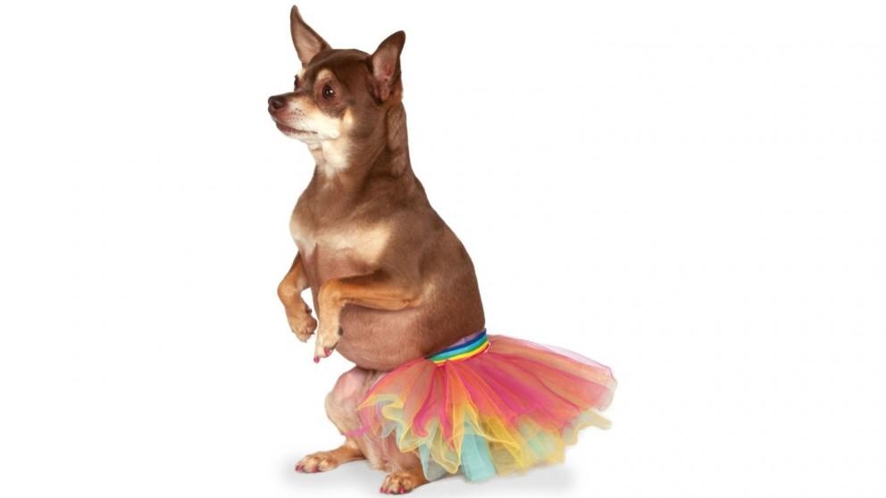 Rainbow Pet Tutu