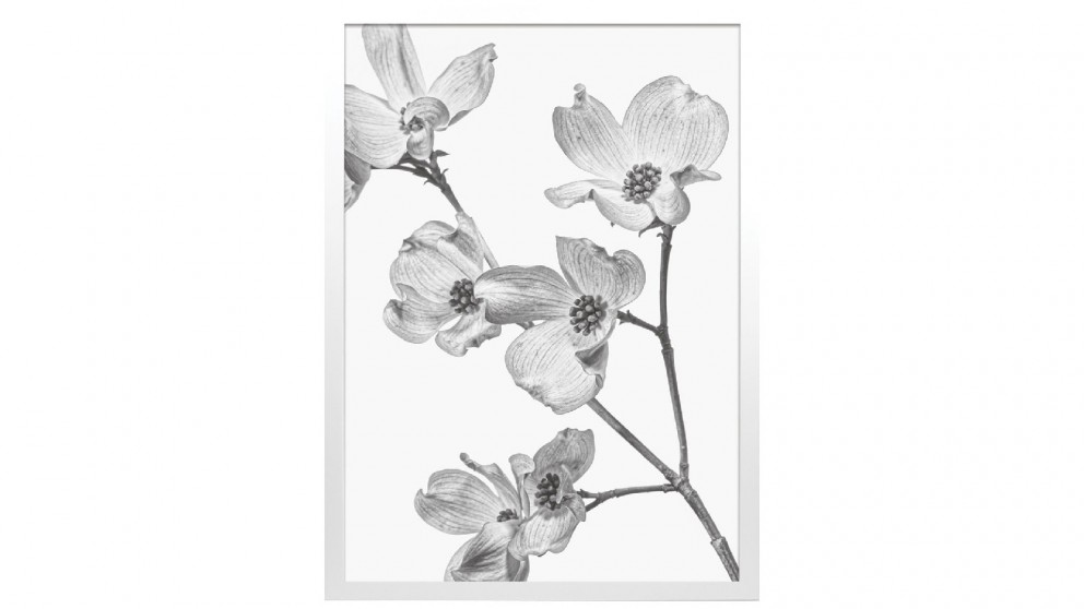 Profile Products Framed Art - Bloom Flowers BW 2 - 75 x 100cm