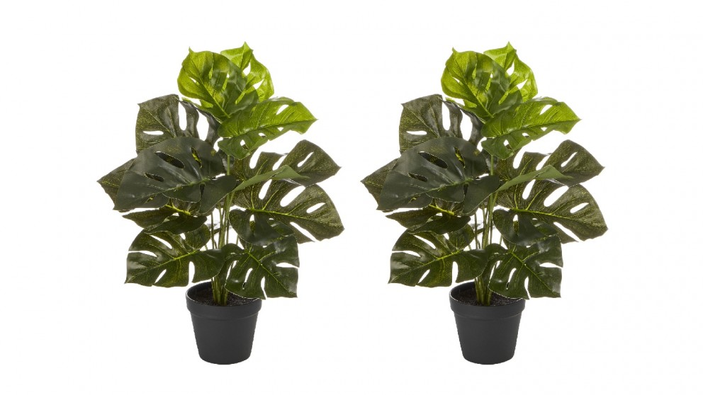 Cooper &Co. 2 x Tall Potted Artificial Monstera - 45cm