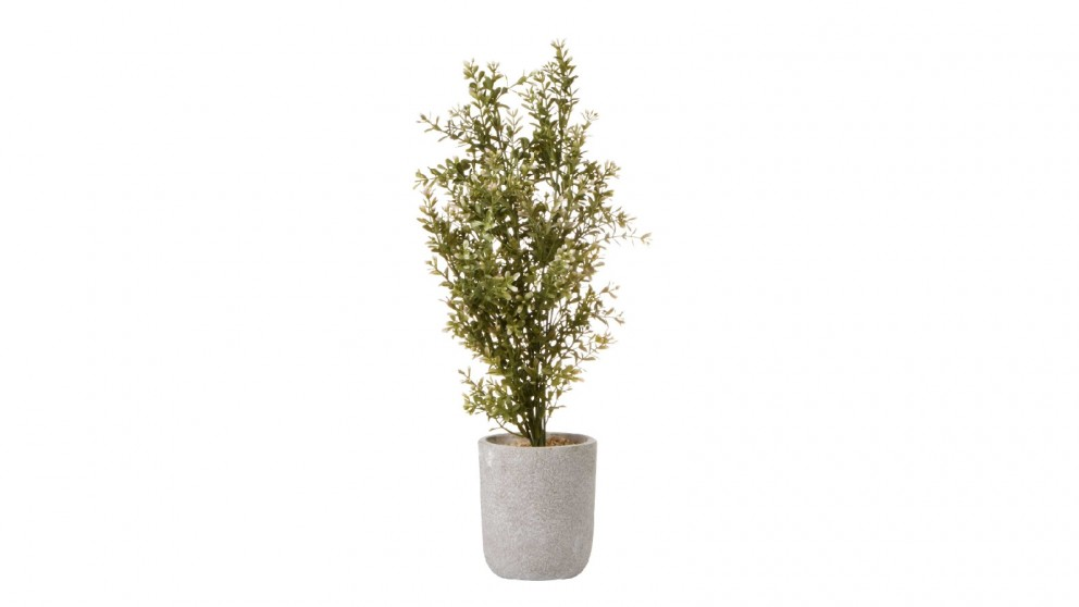 Cooper & Co. Chinese Perfume Artificial Plant - 48cm