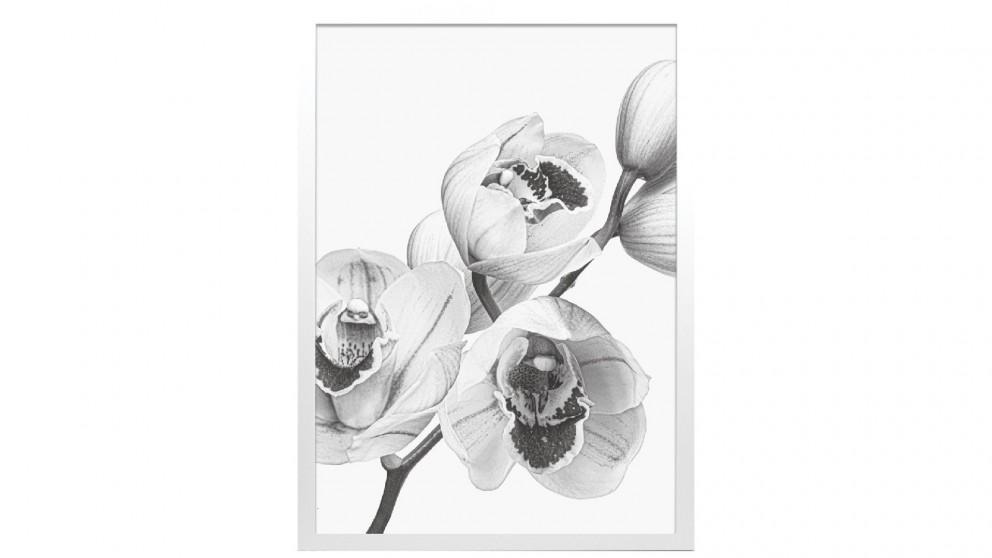 Profile Products Framed Art - Bloom Flowers BW 1 - 75 x 100cm