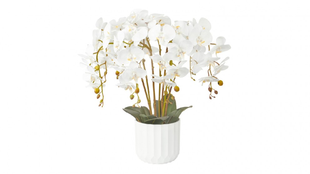 Cooper & Co. Large White Orchid Potted Faux Plant - 55cm