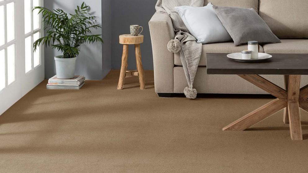 Dreamweaver Coastal Comfort Birchwood Carpet Flooring