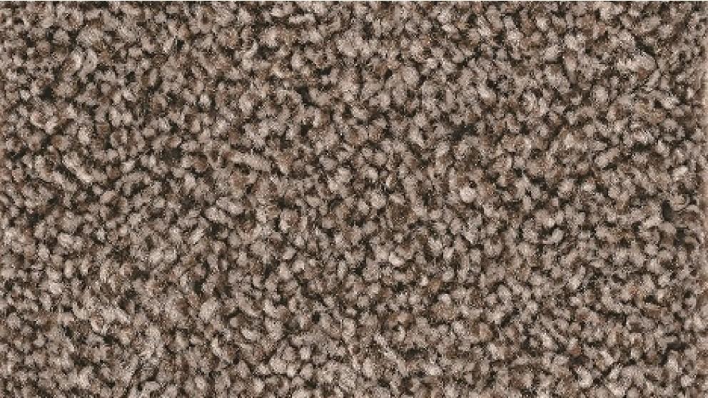 Smartstrand Forever Clean Chic Tonal Bittersweet Carpet Flooring