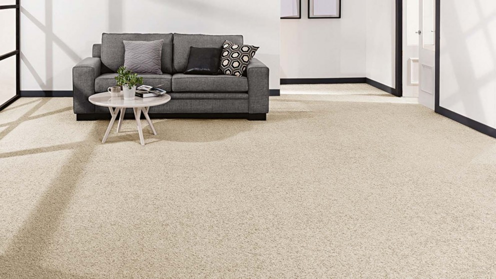 Smartstrand Forever Clean Chic Tonal Canvasback Carpet Flooring