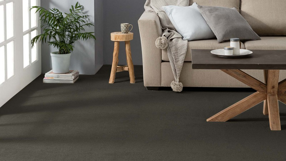 Buy Dreamweaver Coastal Comfort Carbon Carpet Flooring | Harvey Norman AU