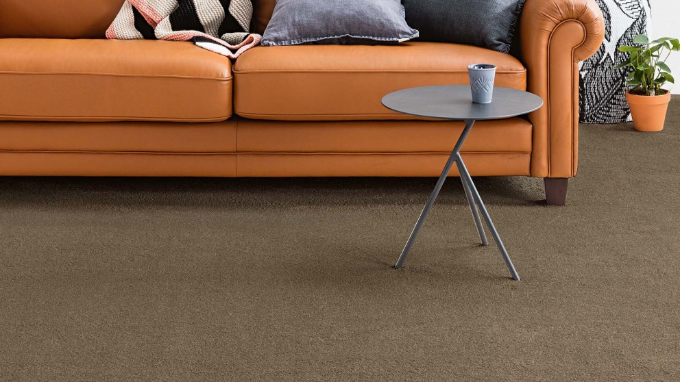 Dreamweaver New Horizon Chateau Carpet Flooring