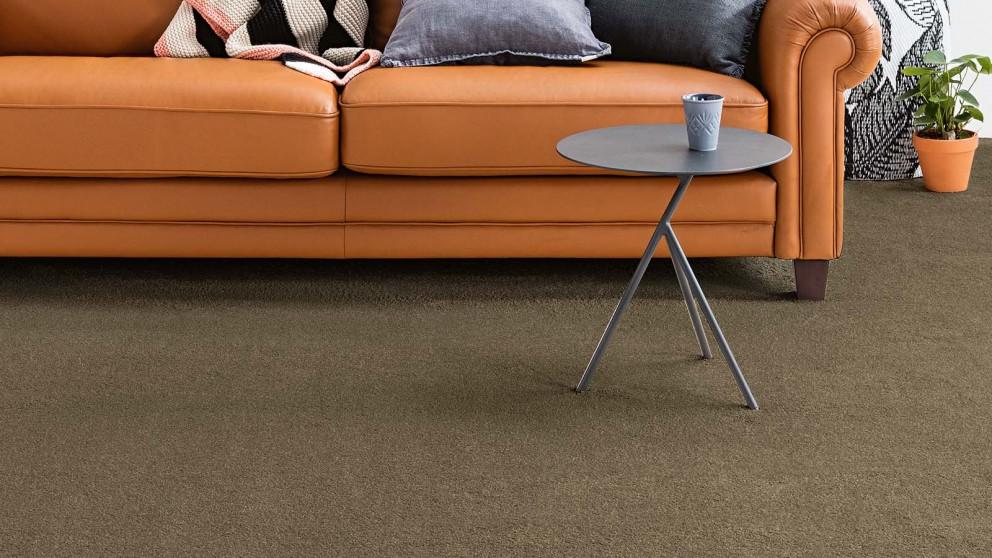 Dreamweaver New Horizon Cocoa Carpet Flooring