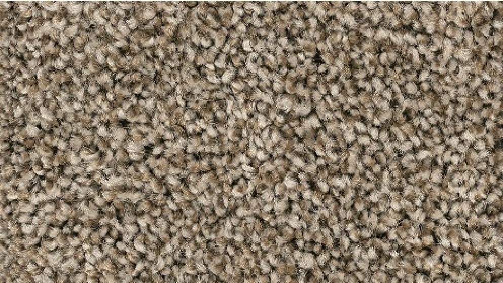 Smartstrand Forever Clean Chic Tonal Dakota Carpet Flooring