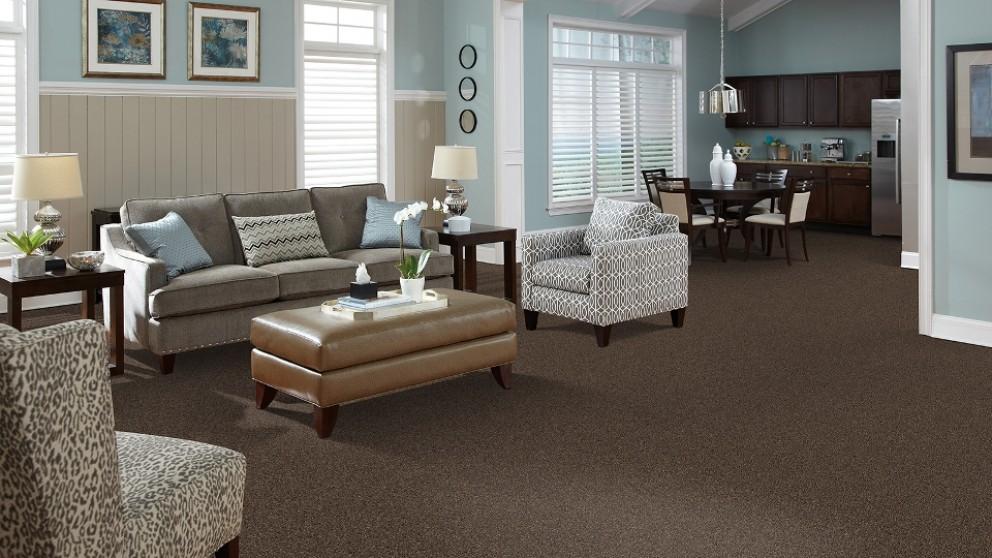 SmartStrand Forever Clean Delightful Charm - Mocha Glaze Carpet Flooring