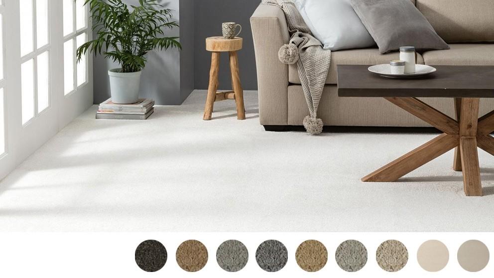 Dreamweaver Coastal Comfort Carpet Flooring