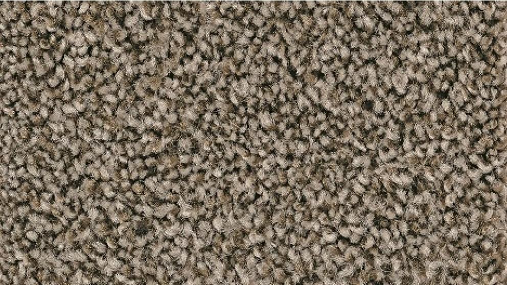 Smartstrand Forever Clean Chic Tonal Druid Carpet Flooring