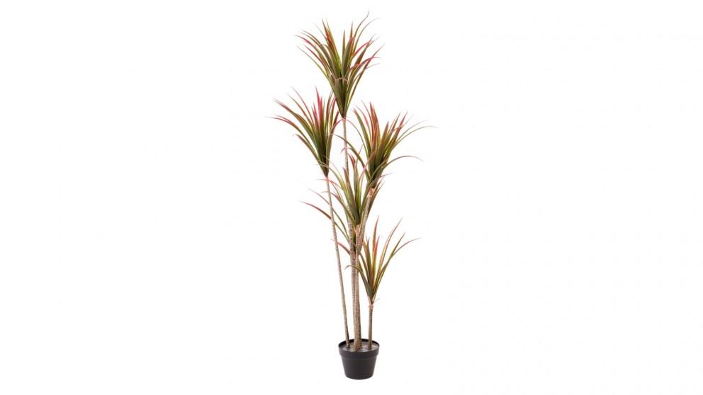 Cooper & Co. Bamboo - 91 cm