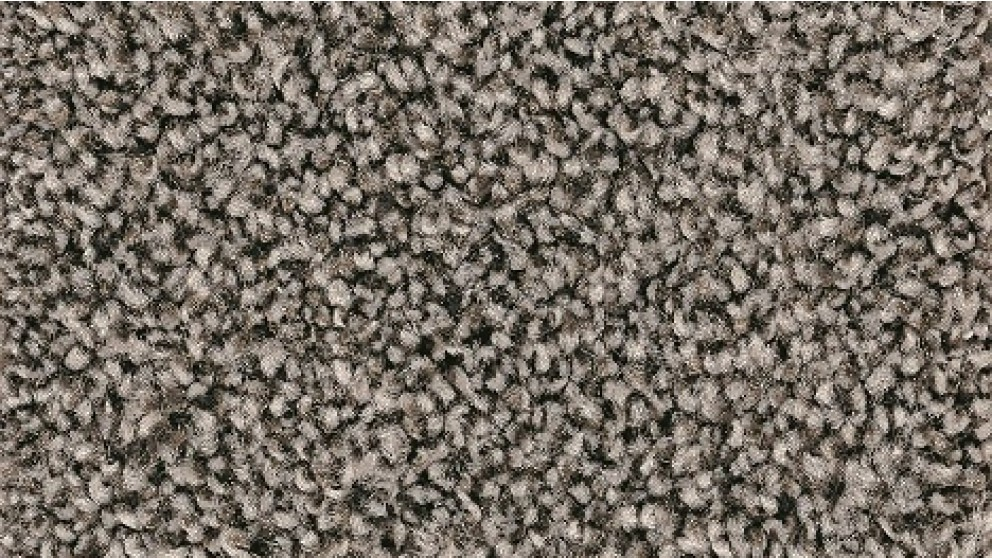 Smartstrand Forever Clean Chic Tonal Eclipse Carpet Flooring