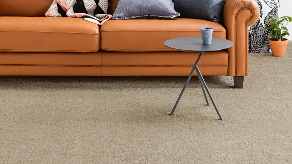 Dreamweaver New Horizon Ecru Carpet Flooring