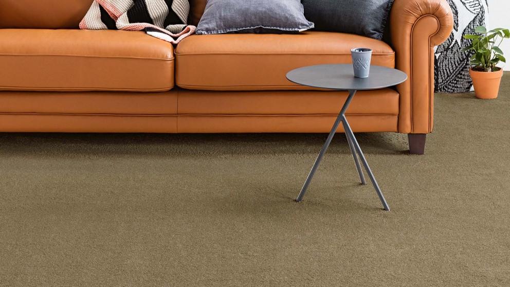 Dreamweaver New Horizon Elegant Carpet Flooring