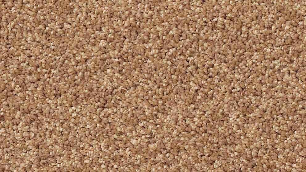 SmartStrand Forever Clean Classic Gentle Doe Carpet Flooring