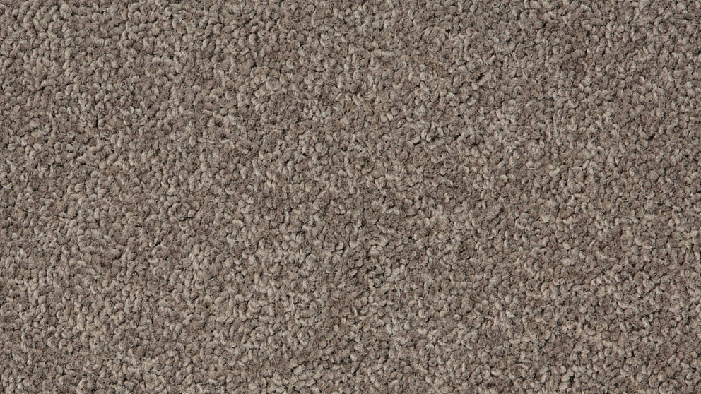 Naturally Smart Enticing Stunning Carpet Flooring