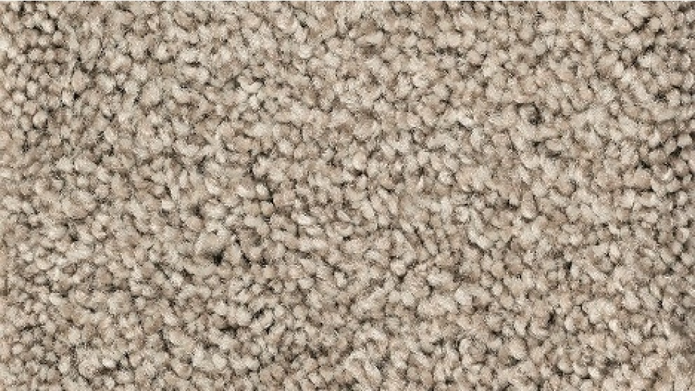 Smartstrand Forever Clean Chic Tonal Griffin Carpet Flooring