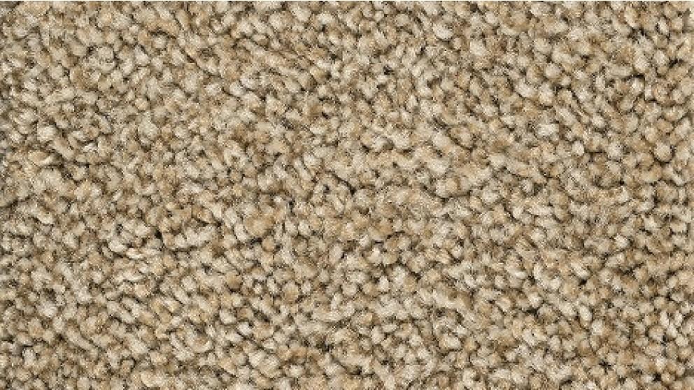 Smartstrand Forever Clean Chic Tonal Harmony Carpet Flooring
