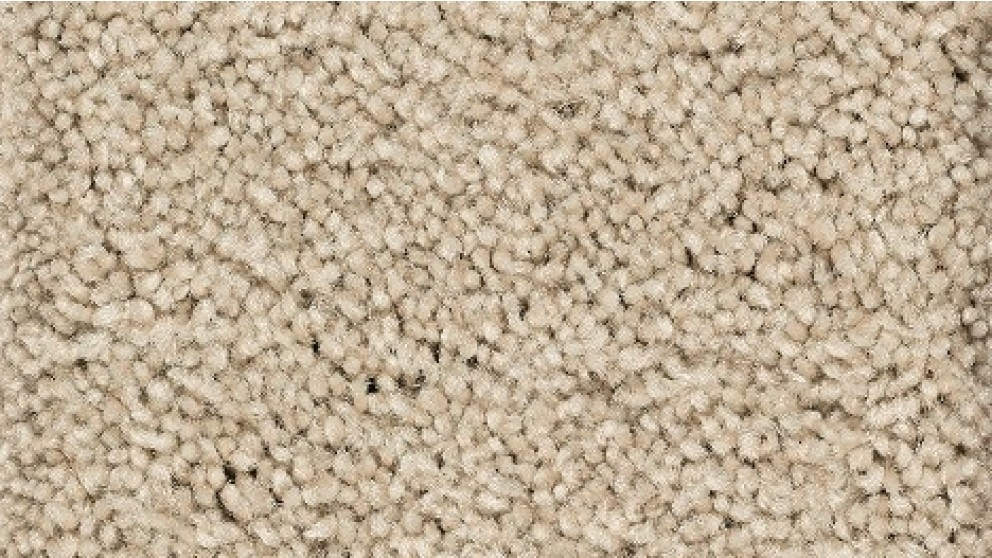 Smartstrand Forever Clean Chic Tonal Homespun Carpet Flooring