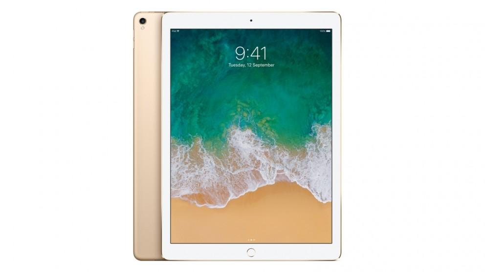 Buy Apple 12 9 Inch Ipad Pro Wi Fi 256gb Gold 2017 Harvey