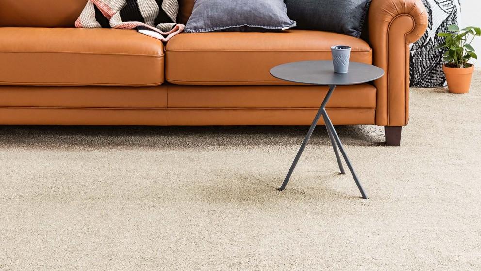 Dreamweaver New Horizon Lace Carpet Flooring