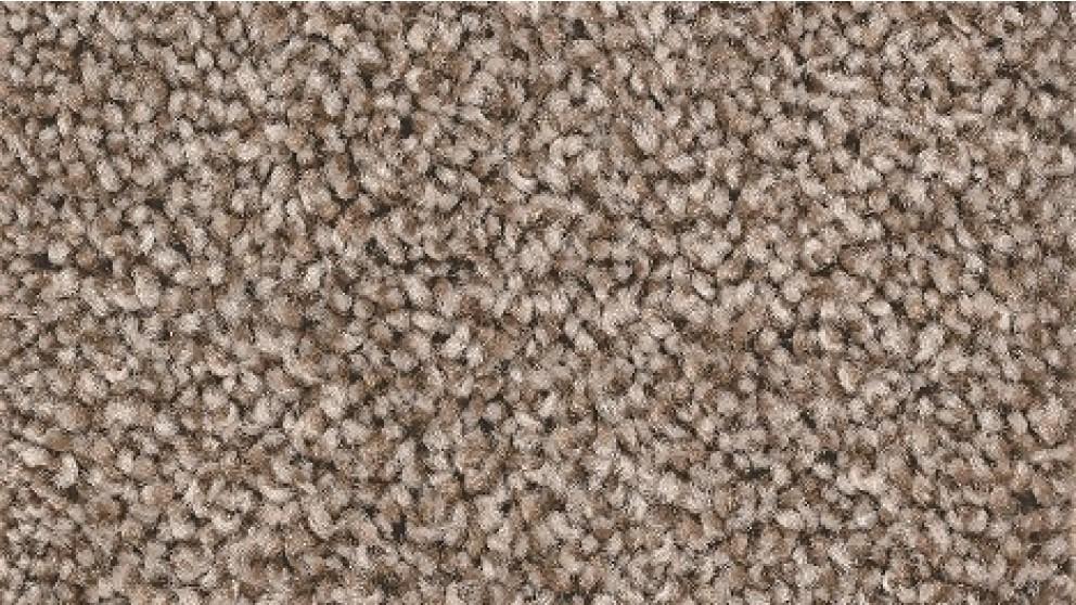 Smartstrand Forever Clean Chic Tonal Mystic Carpet Flooring