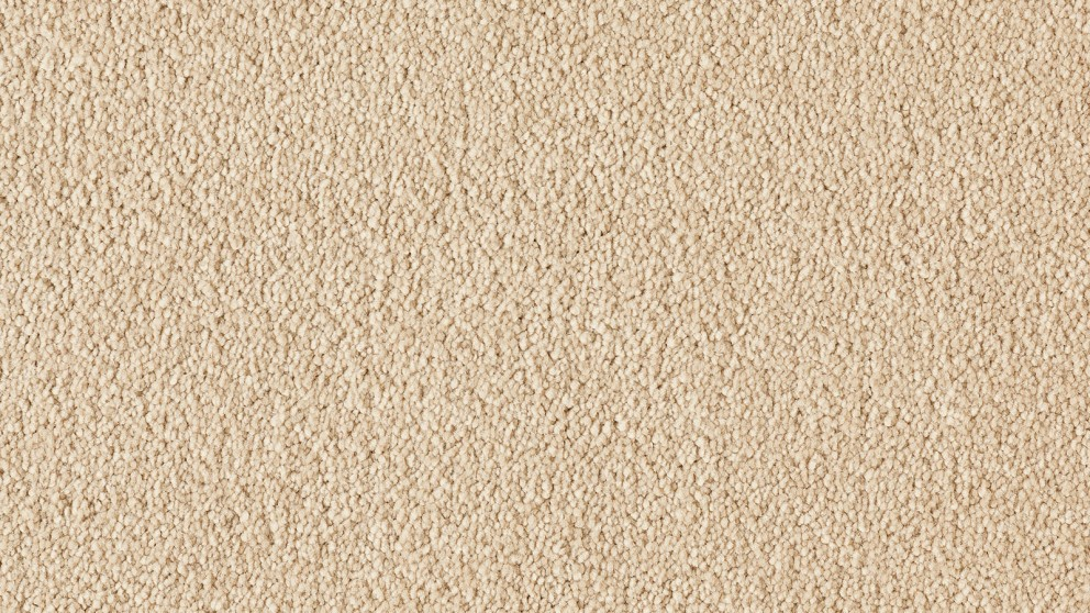 Natural Allure Sunlight Carpet Flooring