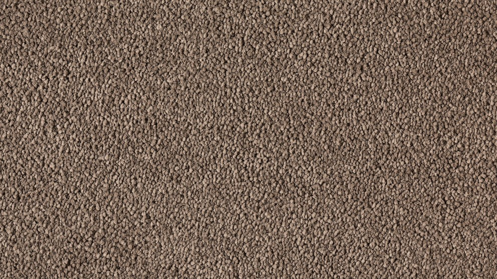 Natural Allure Rich Earth Carpet Flooring