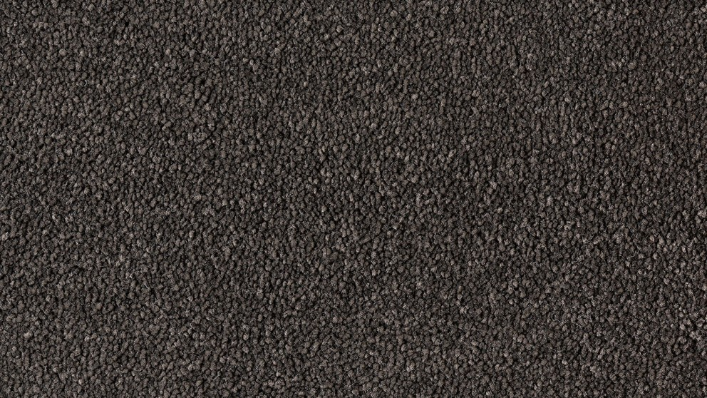 Natural Allure Ebony Carpet Flooring