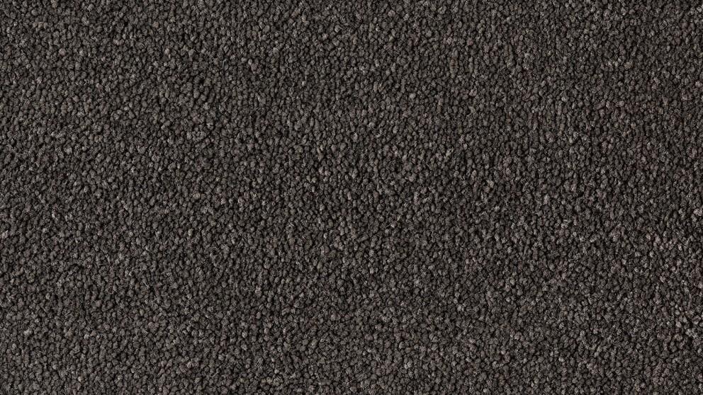 Natural Allure Ebony Carpet Flooring
