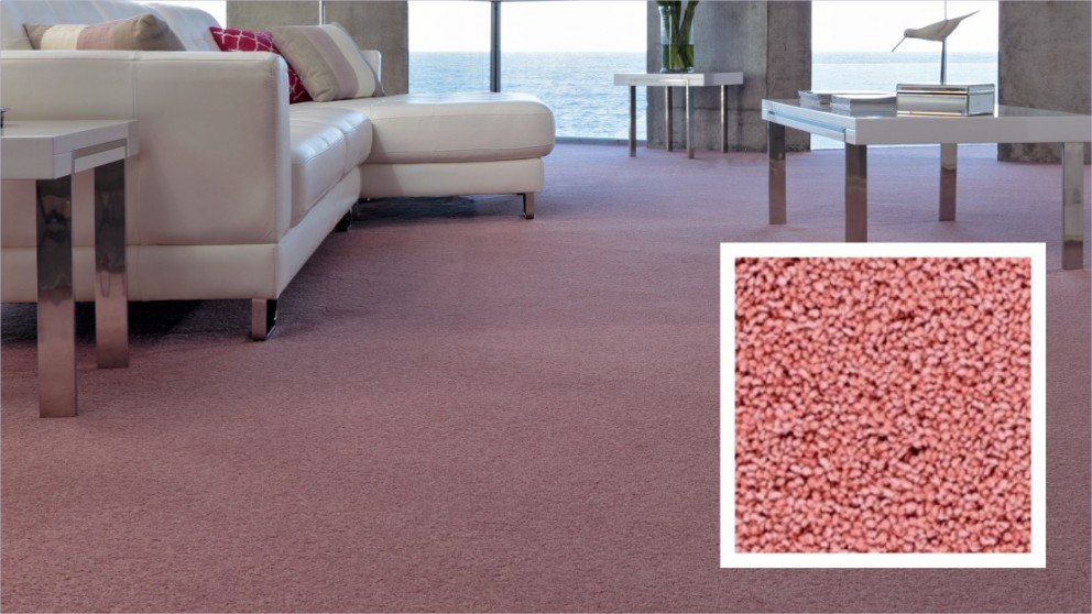 Naturally Smart Enticing Carpet Flooring