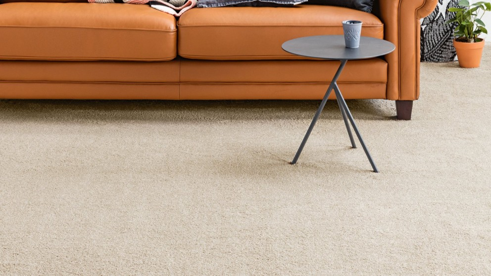 Carpet Stain Resistant Treatment Shaw Water Resistant