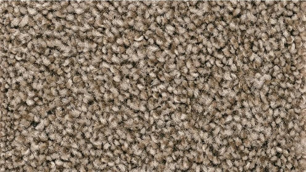 Smartstrand Forever Clean Chic Tonal Nutmeg Carpet Flooring