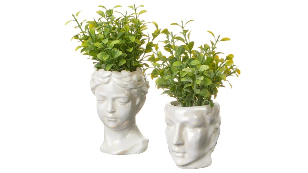 Cooper & Co. 25/20cm Set of 2 Artificial Potted Roman Head Plants