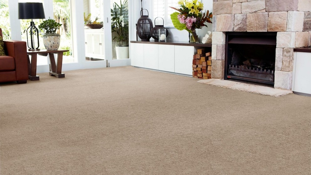 SmartStrand Forever Clean Chic - Fallen Timber Carpet Flooring