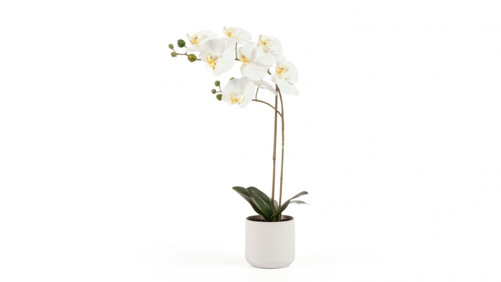 Cooper & Co. Orchid Potted Artificial Plant White - 53cm