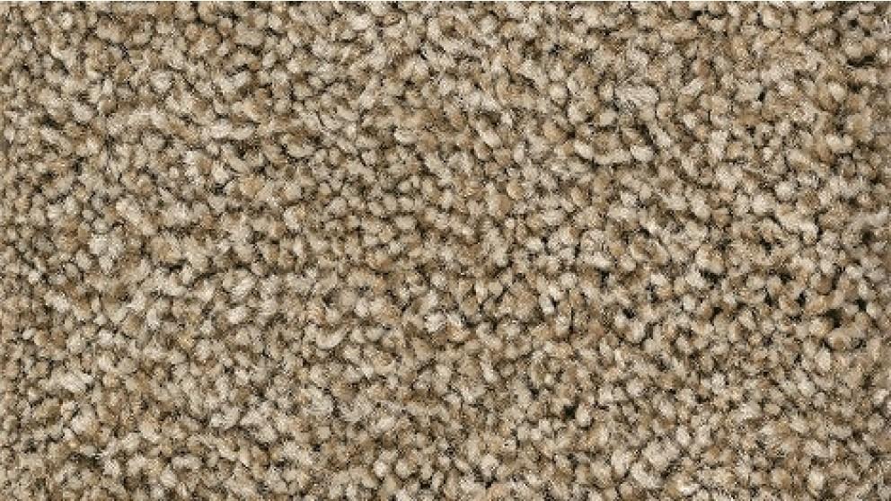 Smartstrand Forever Clean Chic Tonal Shadywood Carpet Flooring